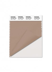 Warm Taupe (16-318)